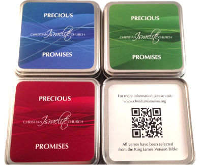 Precious Promise Boxes (Set of 3)